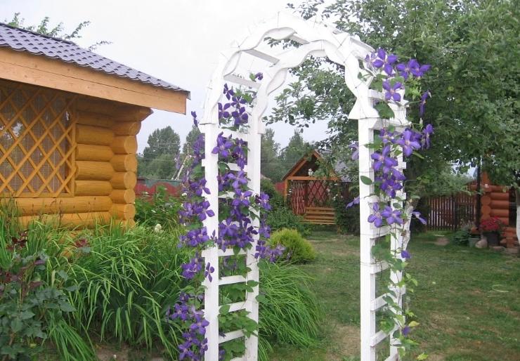 Пластиковые садовые арки для дачи