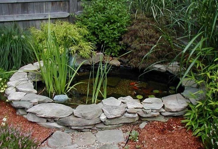Оформление садового пруда